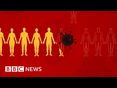Coronavirus: What is social distancing? - BBC News