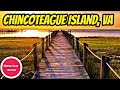 10 THINGS TO DO IN CHINCOTEAGUE ISLAND, VIRGINIA
