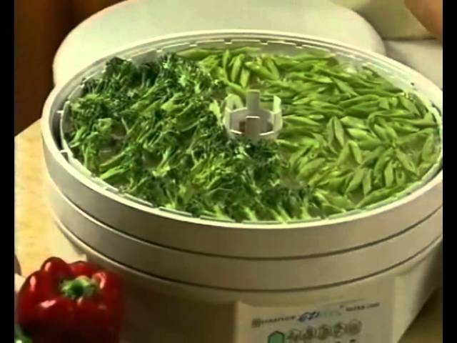 Healthmakers Ezidri Food Dehydrator