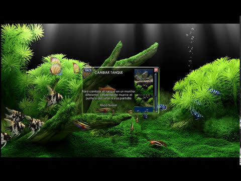 Un Acuario en la Pc (screensaver)