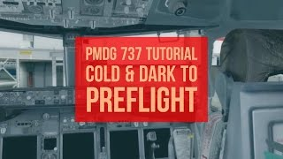 How to PMDG 737 NGX! Cold & Dark to Preflight | ✈ The Virtual Airline Pilot