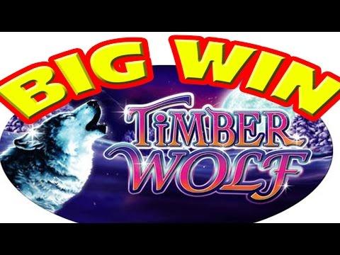 media timber wolf slot machine bonus win
