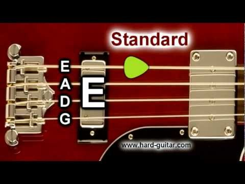 Lesson Bass - A Ton Of Scales For Bass Standard Drop D Tuning