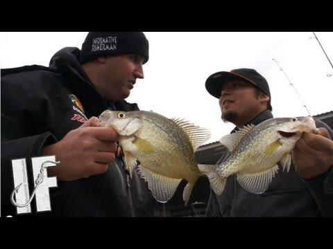 IF - How to catch CRAPPIE!!!