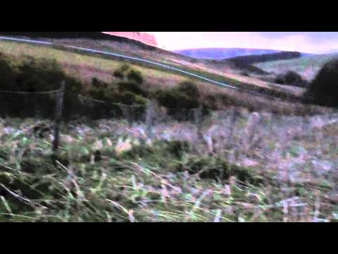 Roe Buck Stalking - Fasque Estate - Scotland