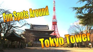 ?Tokyo Guide Ep.14?HAMAMATSUCHO/TOKYO TOWER #tokyoextra #??EXTRA