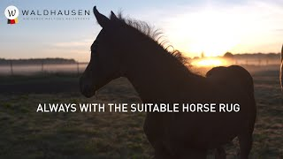 Waldhausen - Always with the suitable horse rug