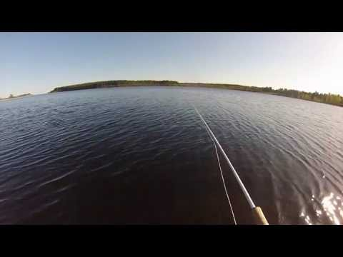 Pike Fly Fishing GoPro