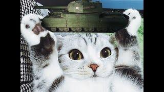 ЛУЧШИЙ ТЯЖ ВОЙНЫ (нет) TYPE 5 HEAVY ~ Tiberian39 [World of Tanks]