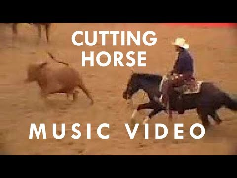 NCHA Cutting Horse - Music Video