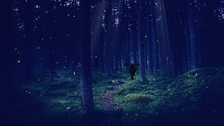 A Night in the Enchanted Forest ASMR Ambience