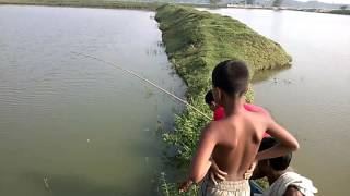 Fishing in village by Parabar Rasha, Video by Parvez Rana