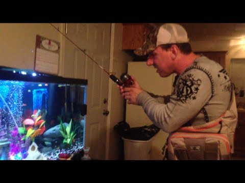 Aquarium Fishing Fail!  Epic Fish Tank Prank.  FUNNY