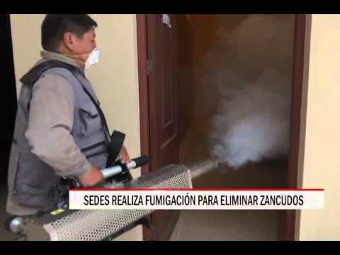 21/10/2014 - 12:55 SEDES REALIZA FUMIGACIÓN PARA ELIMINAR ZANCUDOS