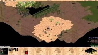 AOE: Rise of Rome 4v4