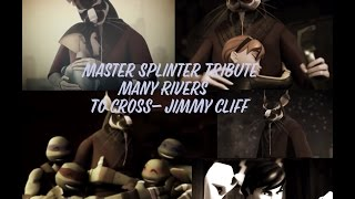 TMNT Master Splinter Tribute ~ Many Rivers To Cross- Jimmy Cliff