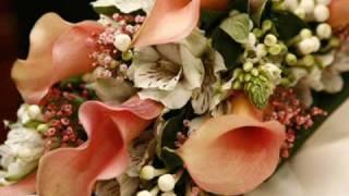 Balada para Adelina ( Richard Clayderman )