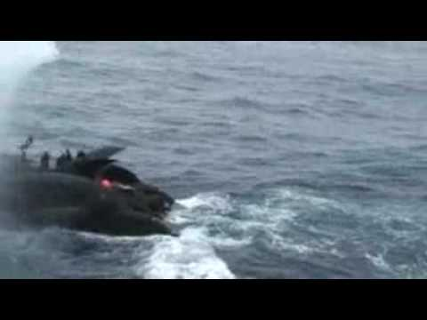 Japan releases whaling crash video