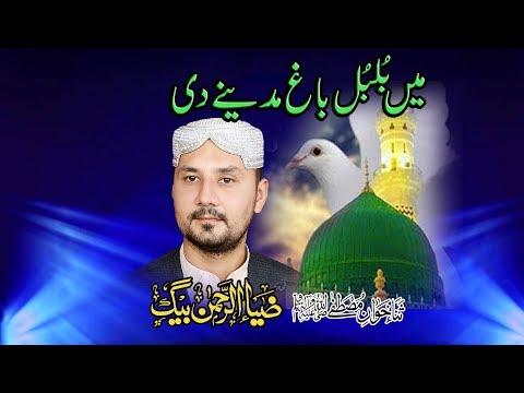 Main Koyal Myra Bagh Madina Saly Ala Myri Kook Urdu Naats By Ziaurrehmanbaig video