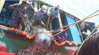 Kerala Deep Blue Sea Fishin  Amazing Traditional F