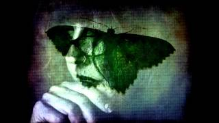 Swallow The Sun- Plague Of Butterflies/III. Evael 10:00