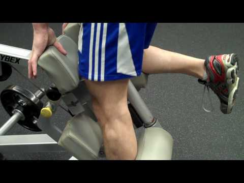 How To: Plate-Loaded Single-Leg Curl (Cybex) Image 1