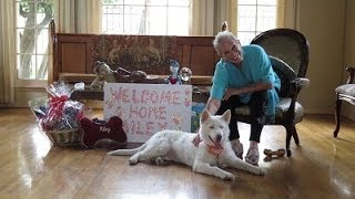 Home Sweet Home, Miley! - The Fuzzy Pet Foundation