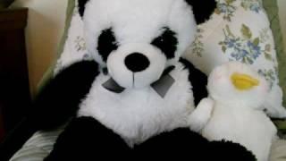 I Wish I Was A Teddy Bear