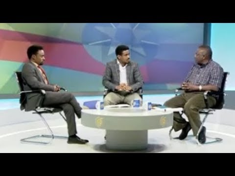 Fana Television | Discussion About Ethiopian Flag
