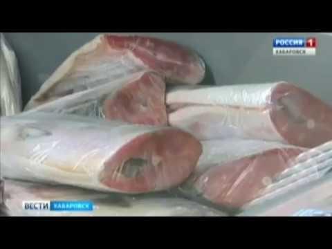 Нижний Амур.Доступная рыба.и Цена безумия.