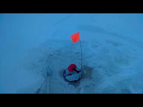 Рыбалка на жерлицы. Ловля щуки зимой. Открытие сезона 2017-2018 по ловле щуки