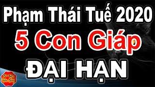 5 Con Giáp Phạm Thái Tuế Năm 2020 Và Cách Hóa Giải Vận Hạn, Chiêu Tài Hút Lộc, Phú Quý Giàu Sang