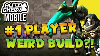 #1 PLAYER on Asia plays this weird 7 Synergy Hunter Build!? 🤔 | Auto Chess Mobile