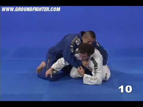 Eduardo Telles Turtle & Octopus Guard - Turtle Sweeps 1