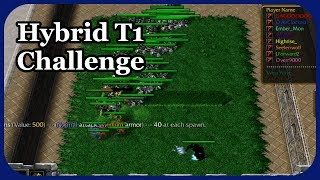 Hybrid T1-Only Challenge
