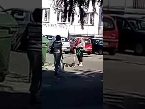 Chamskie zachowanie kobiety wobec psa