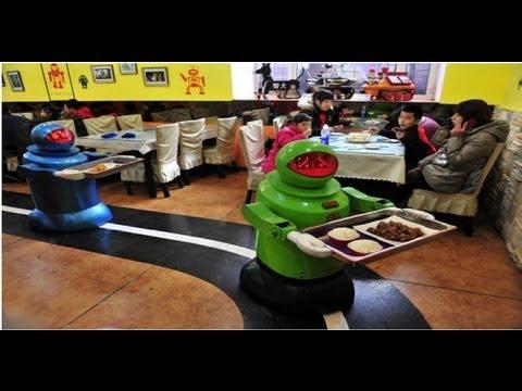 TISHITU Line Follower Waitress by Robot & Mechatronics for Restaurants, Hospitals and Hotels