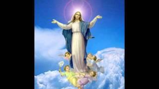 Vídeo 130 de Comunidade Católica Shalom