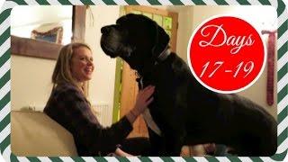 A singing dog | Vlogmas 17.12.15-19.12.15