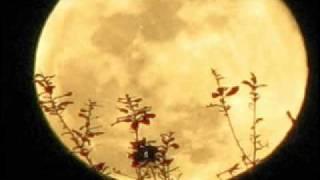 Watch Jimmy Webb The Moons A Harsh Mistress video