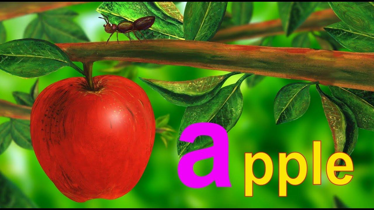 Alphabet Letter A - Lower Case - YouTube