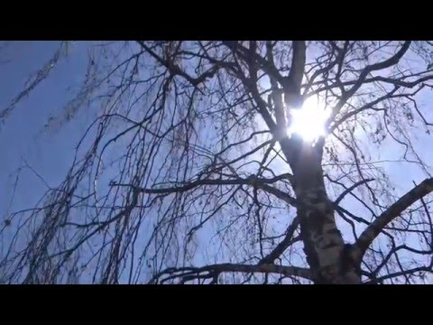 Antonello Venditti - Ma Che Bella Giornata Di Sole