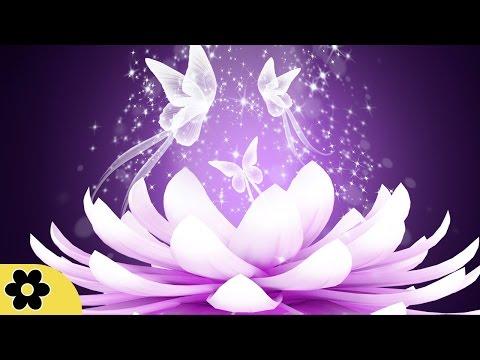 Relaxing Reiki Music, Positive Energy Music, Relaxing Music, Slow Music, ✿2628C