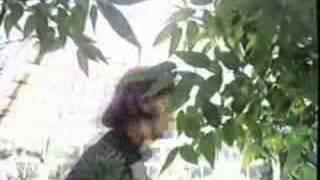 Vídeo 211 de The Beatles