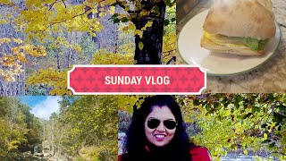 My Sunday| VLOG | STARBUCKS SANDWICH AT HOME | FALL COLORS