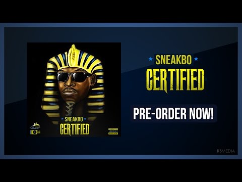 SNEAKBO - RING A LING [AUDIO]