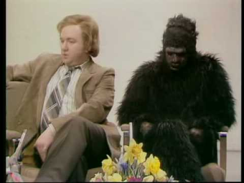 Not The Nine O'Clock News - Gerald the gorilla