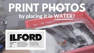 Darkroom Printing Experience | Film Photography Series Part 3/3