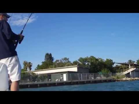 Key Biscayne Tarpon Fishing