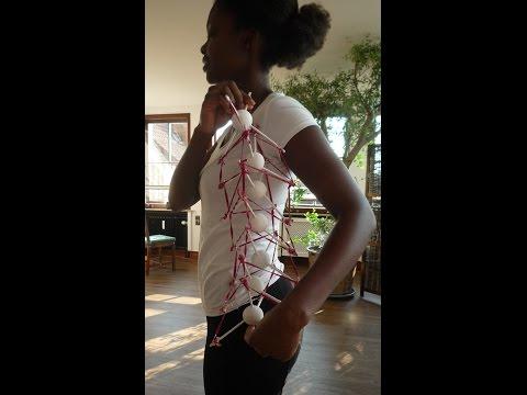 Rückenschmerzen? Tensegrity und Wirbelsäule